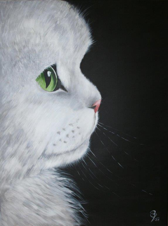 chat-blanc_80x60_acrylique.jpg